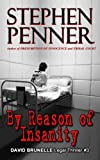 By Reason of Insanity (David Brunelle Legal Thrillers Book 3)