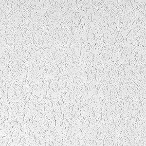 Usg Fifth Avenue Ceiling Tile 2 ' X 4 ' X 5/8