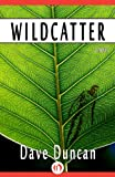 Wildcatter: A Novel