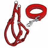 Kang® Adjustable Polka Dots Print Nylon Small Dog Puppy Pet Harness and Walking Leash (Red)