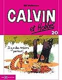Calvin & Hobbes, Tome 20 : Il y a des trésors partout ! (petit format)