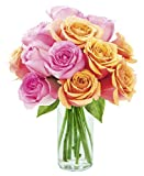 Kabloom You're Amazing Orange and Pink Roses with Vase, 2.5 Pound