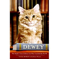The Small-Town Library Cat Who Touched the World