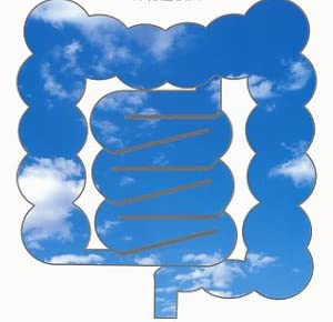 汚れた腸が病気をつくる―腸をクリーンにする究極的方法