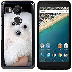 GREAT PHONE CASE GIFT // Mobile Phone Case Hard Case PC Derecative Cover Protective Case for LG GOOGLE NEXUS 5X H790 /Maltese Dog White Small Longhair/