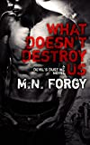 What Doesn't Destroy Us (The Devil's Dust Book 1)
