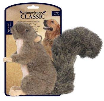 American-Classic-Squirrel