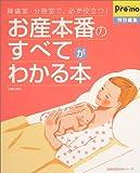 お産本番のすべてがわかる本―陣痛室・分娩室で、必ず役立つ! (主婦の友生活シリーズ)