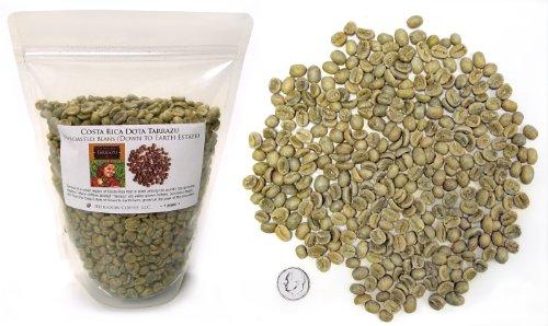 Costa Rica Dota Estate, Green Unroasted Coffee Beans