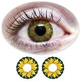 Farbige Kontaktlinsen Monatslinsen Fun Picasso Hazel /Braune ohne Stärken / Dioptrien