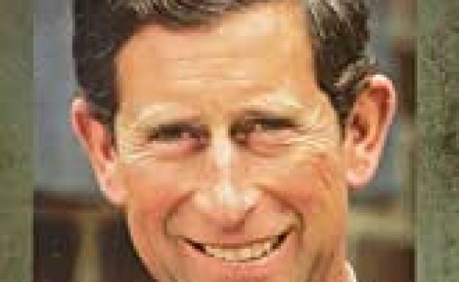 Amazon A E Biography Prince Charles The Private Man