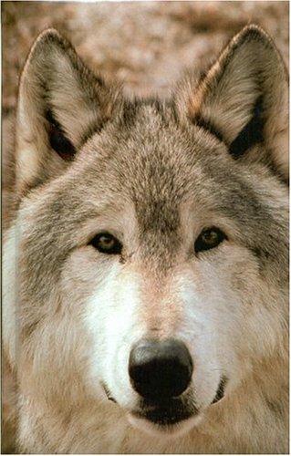 Blank Journal: Wolf