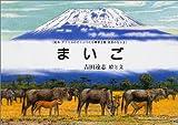 まいご (絵本アフリカのどうぶつたち第3集・草原のなかま)
