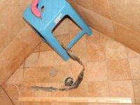 Lightnin Fast Unclogger for Sink and Shower Drains ...