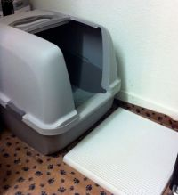 Best litterbox for messy cats? - Cat Forum : Cat ...