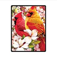 Amazon.com: Funny red Cardinal bird art,cute birds design ...