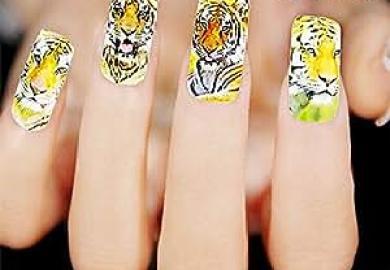 3d Nail Art Amazon