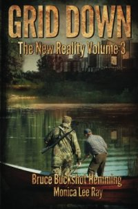 Grid Down: The New Reality (Volume 3)