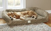 Deep Dish Dog Bed For Senior Dogs | WebNuggetz.com