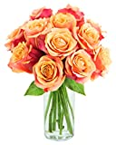 Long-stemmed Orange Roses (One Dozen) - With Vase