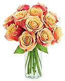 Long-stemmed Orange Roses (One Dozen) - With Vase
