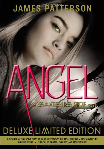 Image result for angel james patterson