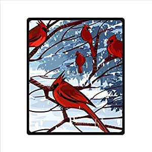 Amazon.com: Funny red Cardinal bird art,cute birds design