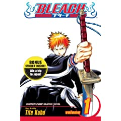 Bleach, Vol. 1