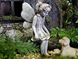Fairy Garden Allie