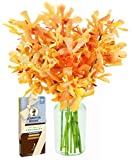 Sunset Serenade with Golden Mokara Orchids and Scharffen Berger Chocolates (10 Stems) - With Vase