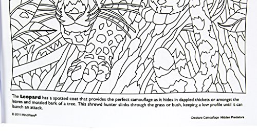Hidden Predators Creature Camouflage Coloring Book Toys