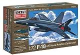 1/72 F-18 アメリカ海軍航空100周年記念カラー
