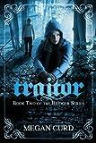 Traitor (Bridger)