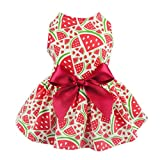 Fitwarm Sweetie Watermelon Pet Clothes for Dog Dress Sundress Shirts - Red - Large