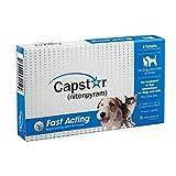 Capstar Flea Treatment Dog (Blue), 2-25 lbs, 6 tablets