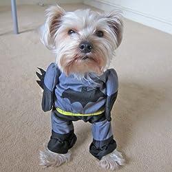 Alfie Pet by Petoga Couture - Superhero Costume Batman - Size: XS