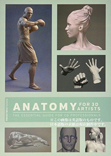 3Dアーティストのための人体解剖学