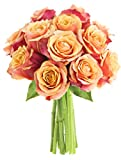Long-stemmed Orange Roses (One Dozen) - Without Vase