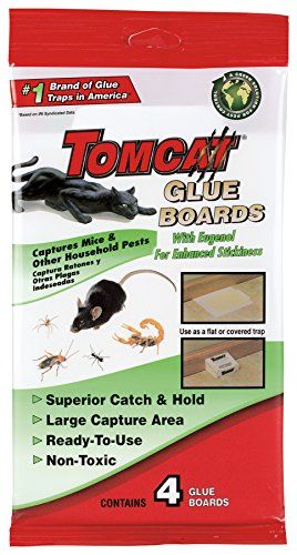 Glue Boards Mouse Trap Captures Mice Rat And Household