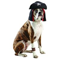 Pirate Dog Halloween Costumes - Best Costumes for Halloween