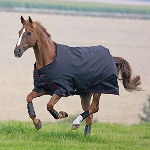 Shires Tempest Plus 300G Turnout Blanket 66 Sporting Goods