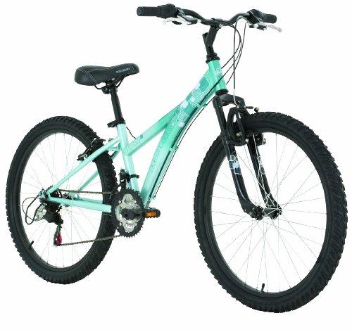 041106e4a6c Diamondback Tess 24 Jr Girls  Mountain Bike (2011 Model