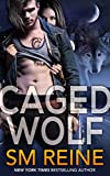 Caged Wolf (Tarot Witches Book 1)