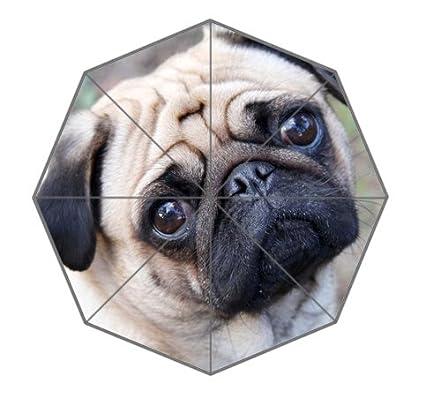Pug Dog Umbrella