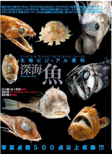 生物ビジュアル資料 深海魚