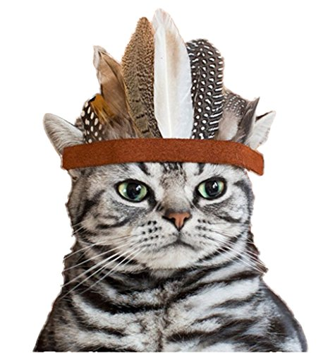 Pet Show Indian Style Feather Eagle Crown Pet Dog Cat