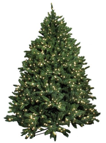 buy good tidings town and country frazier artificial prelit christmas tree 6 12 feet tall with 1100 clear lights black friday - Black Friday Artificial Christmas Tree Sales