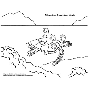 Hawaii's Green Sea Turtles (Science and Nature for Young Readers)