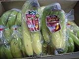 フィリピン産甘熟王バナナ大箱12kg入り