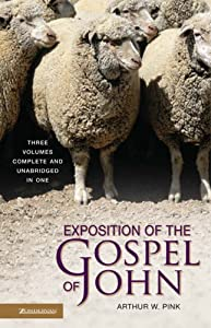 "Cover of ""Exposition of the Gospel of Joh..."